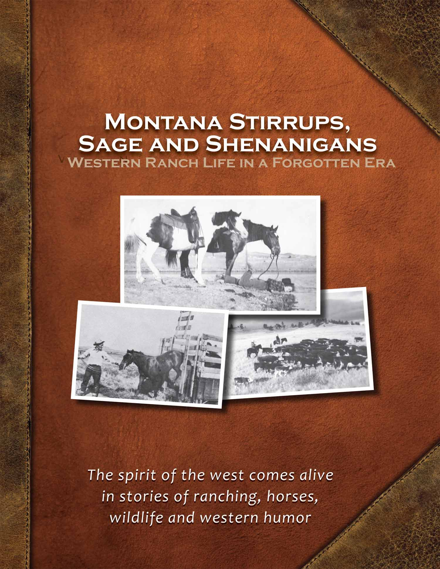 Cover of Montana Stirrups, Sage and Shenanigans